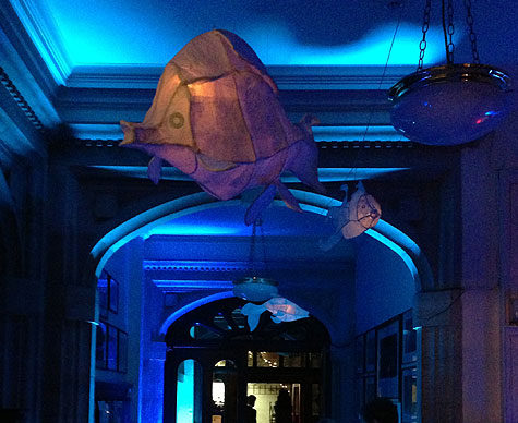 Glowing fish lanterns